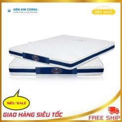 Dem Cao Su Non Jadeitone Cao Su Tong Hop Lo Xo Asling Nem Kim Cuong Gia Re American Thang Loi Van Thanh Thuan Viet Song Hong Everon Evehome Vua Nem 5